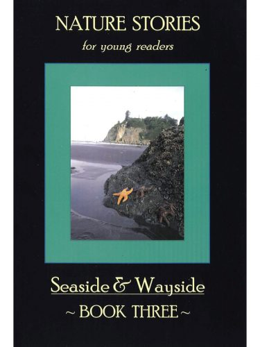Seaside & Wayside Book 3