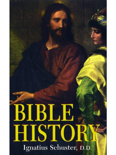 Bible History Text (Schuster)